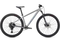 Bicicleta SPECIALIZED Rockhopper Expert 29 - Satin Silver Dust/Black Holographic L