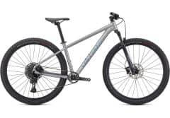 Bicicleta SPECIALIZED Rockhopper Expert 29 - Satin Silver Dust/Black Holographic XL