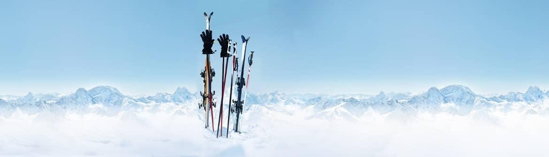 bete de ski